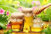 Продам – Мёд из домашней пасеки – Скидки %
